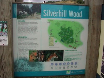 silverhill single guys 100% free online dating in silverhill 1,500,000 daily active members.